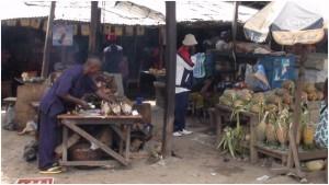 Kameroen project 2